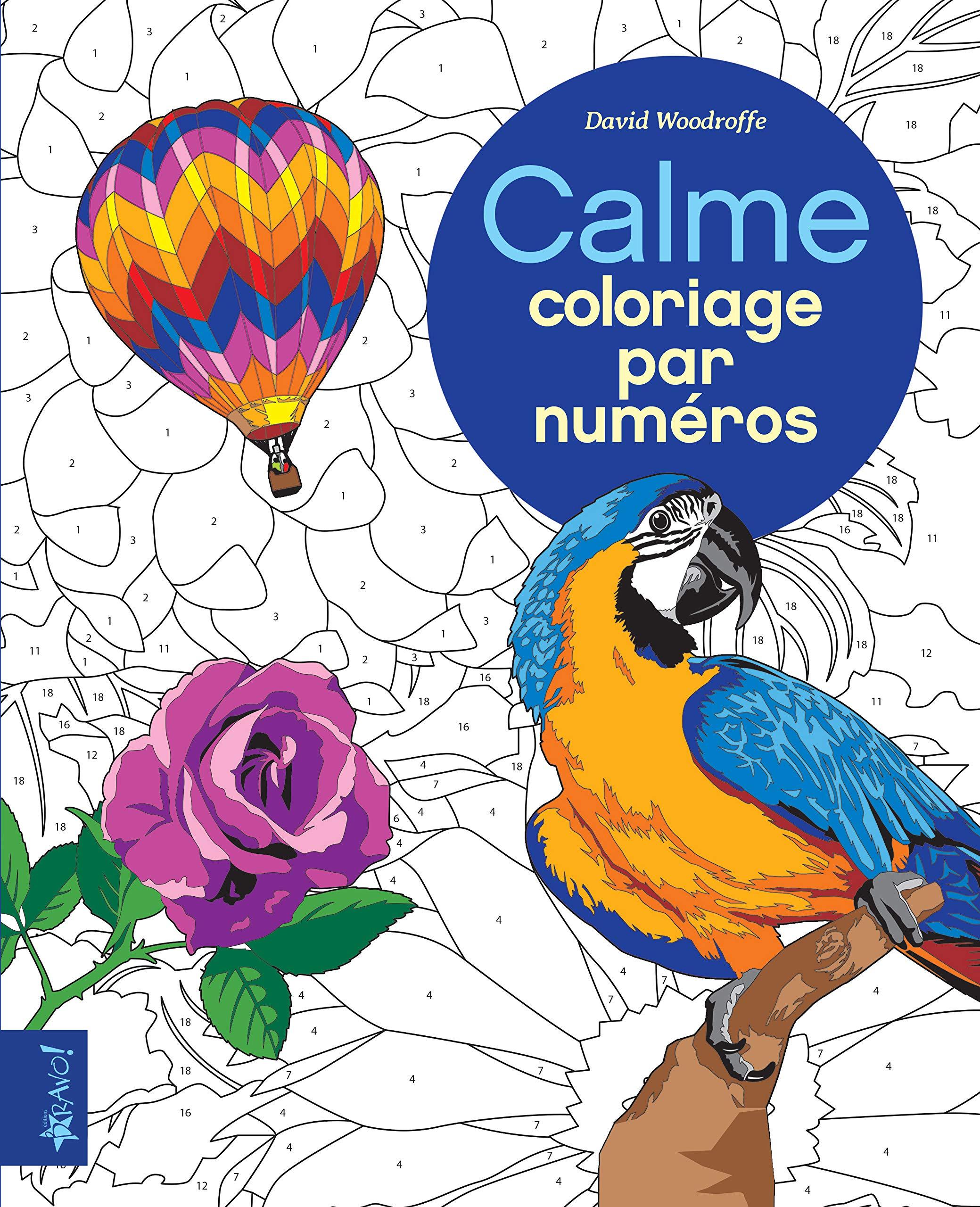 Calme Coloriage Par Numéros Amazon Ca David Woodroffe Books