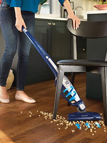 Best Vacuum For Cat Litter 5 Tools You Need To Have Right