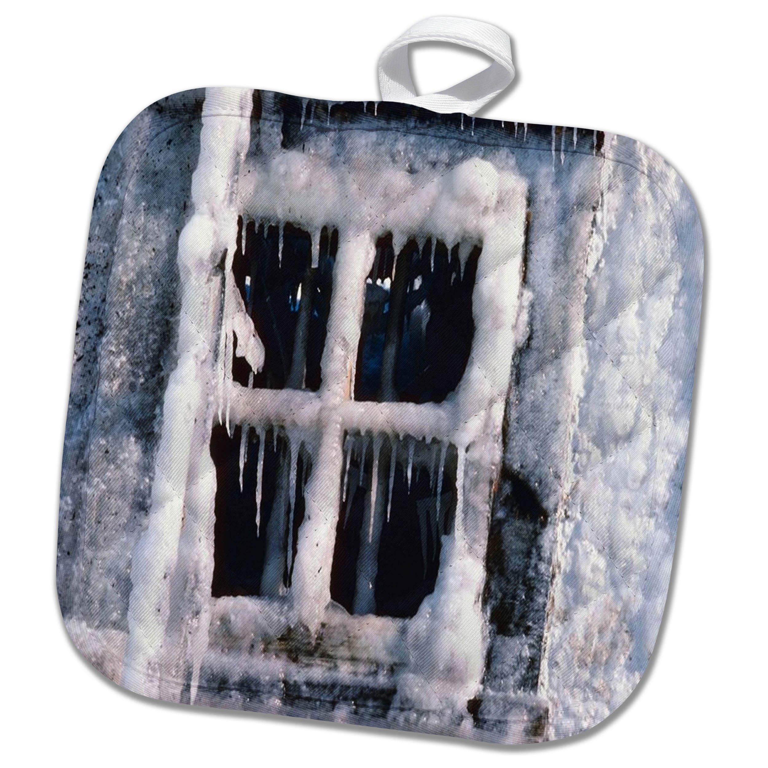 3dRose TDSwhite – Winter Seasonal Nature Photos - Snowed In Window - 8x8 Potholder (phl_284914_1)