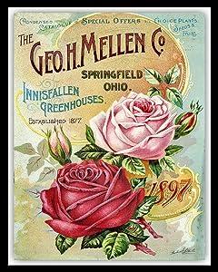 nobrand Rose Metal Tin Sign Flowers Garden Decor Tin Sign 8x12 Inches