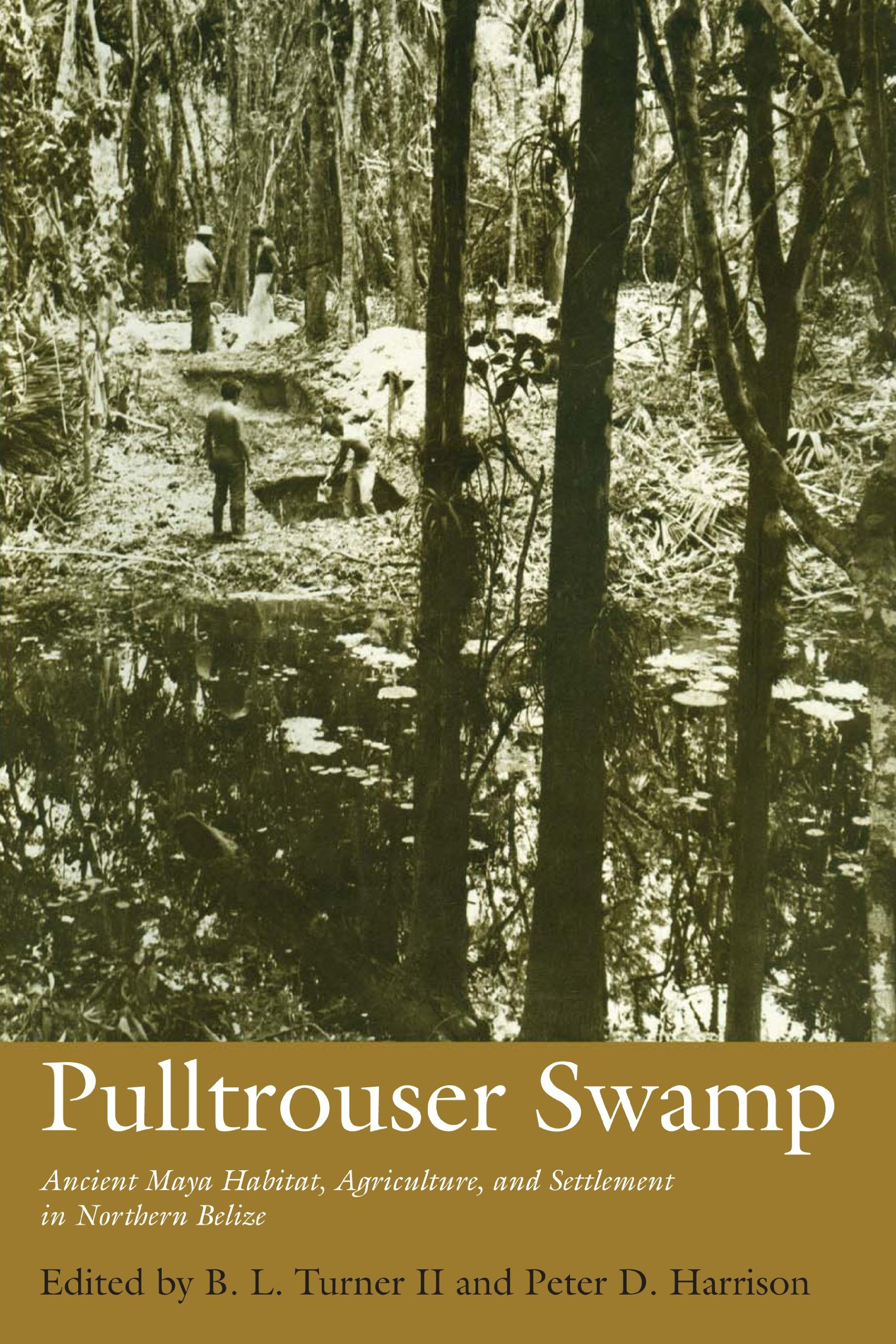 Pulltrouser Swamp: Ancient Maya Habitat, Agriculture, and Settlement in Northern Belize (Texas Pan American Series)