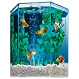 Tetra Bubbling LED aquarium Kit 1 Gallon, Hexagon