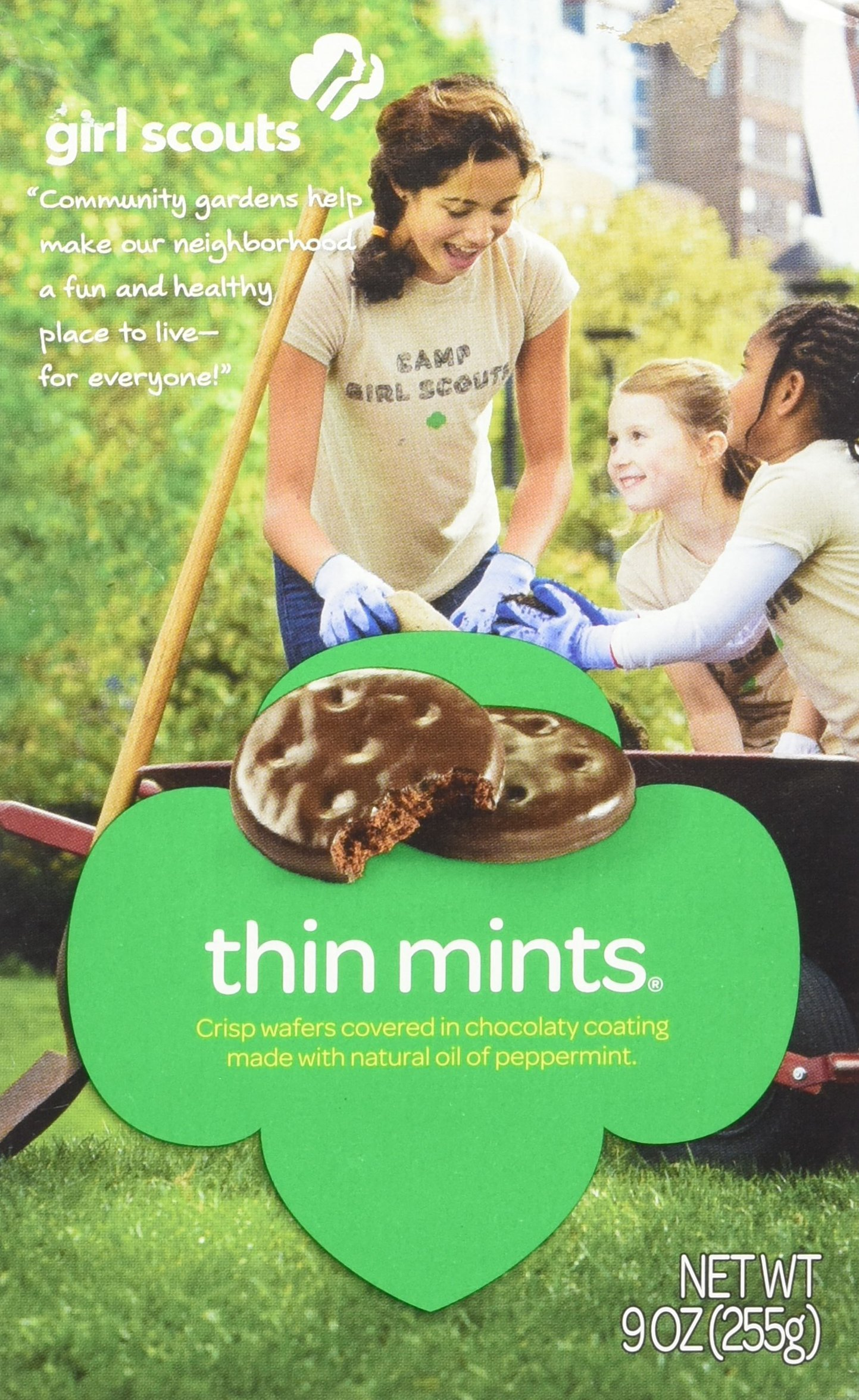 Amazon Girl Scout Thin Mints Cookies 9 OZ