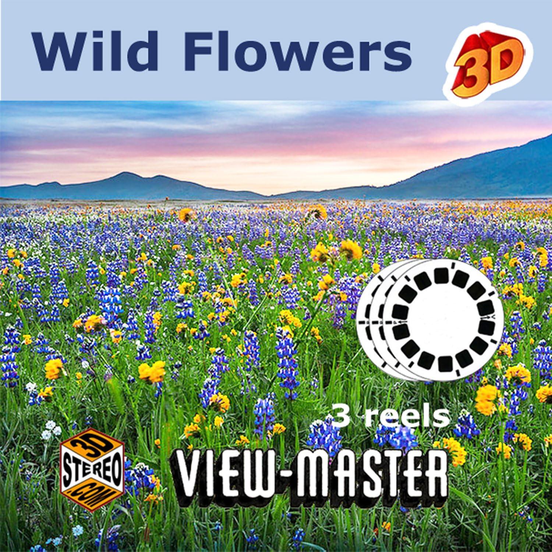3 ViewMaster Classic Vintage 3D Reels California Desert Wildflowers