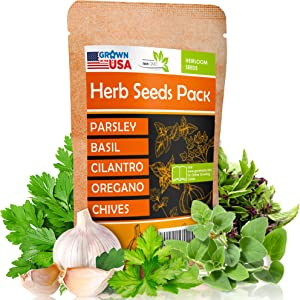 Parsley, Basil, Cilantro, Oregano, Chives - 5 Culinary Herb Seeds Pack - Heirloom and Non GMO, Grown in USA - Indoor or Outdoor Garden