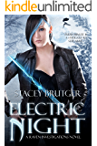 Electric Night (A Raven Investigations Novel Book 5)