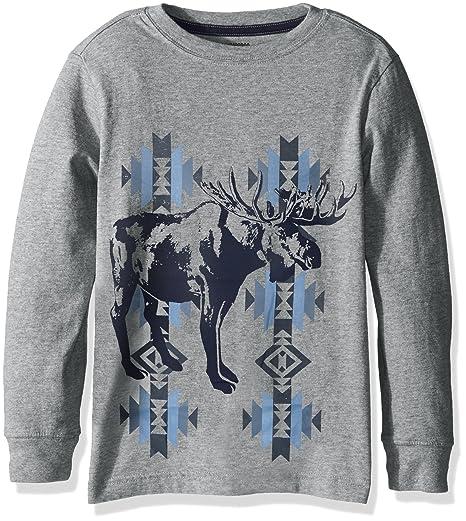 d503acd697 Amazon.com: Gymboree Boys' Big Long-Sleeve Hood Graphic Tee, : Clothing