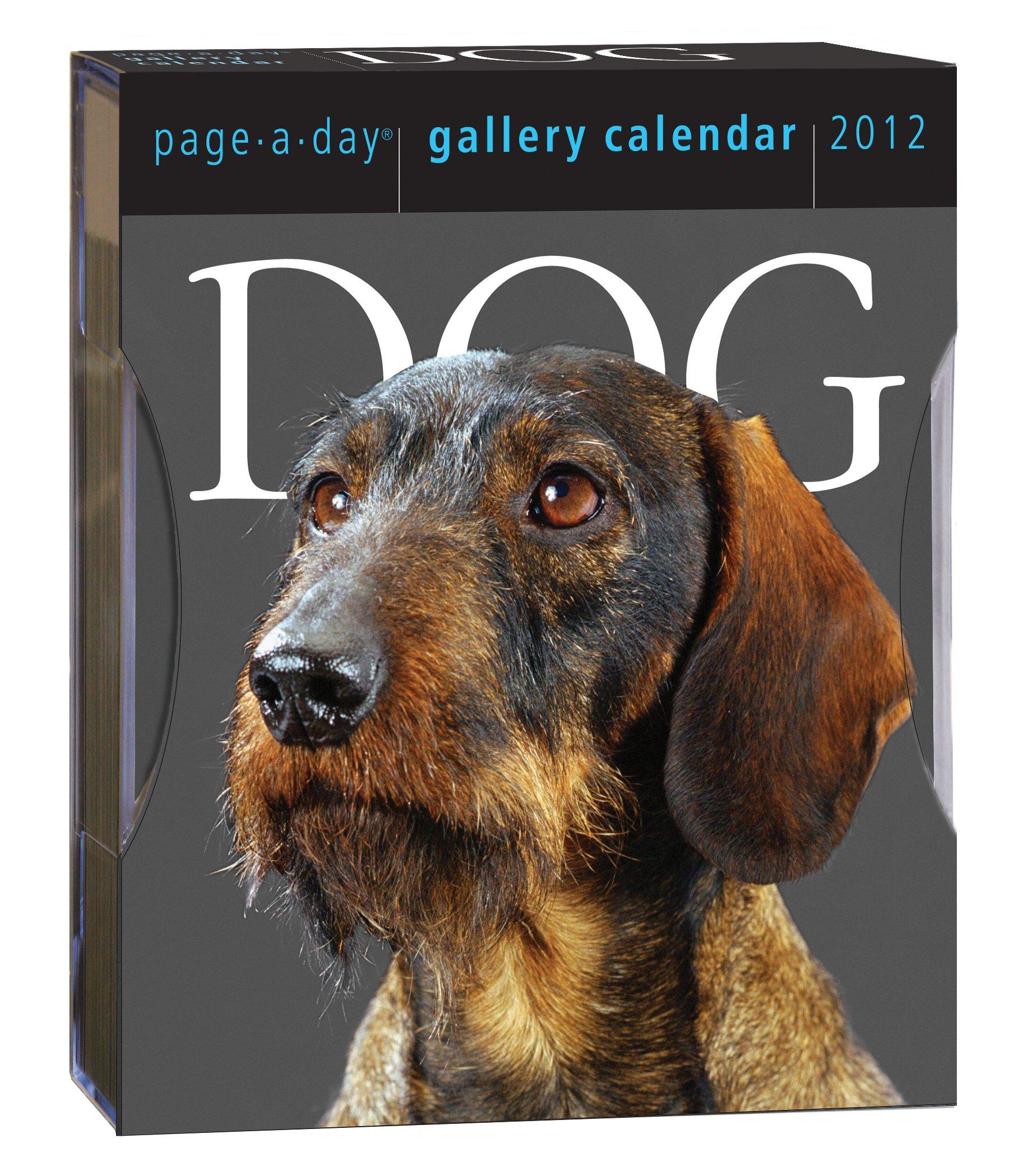 Read Online Dog 2012 Gallery Calendar pdf epub