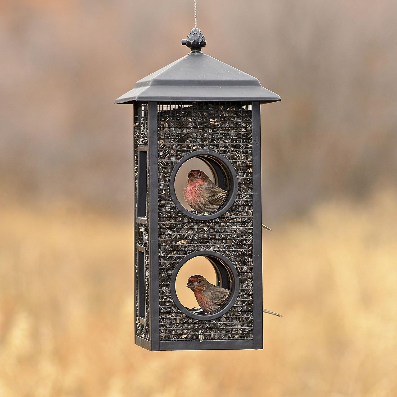 1 Pack Perky-Pet B00303 Fly-Through Wild Bird Feeder Black