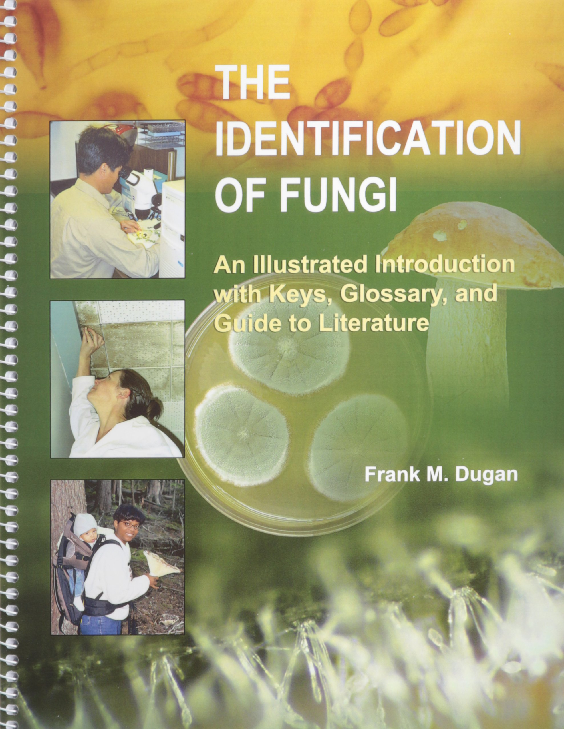 Buy The Identification of Fungi: An Illustrated Introduction With Keys,  Glossary, And Guide to Literature Book Online at Low Prices in India | The  ...