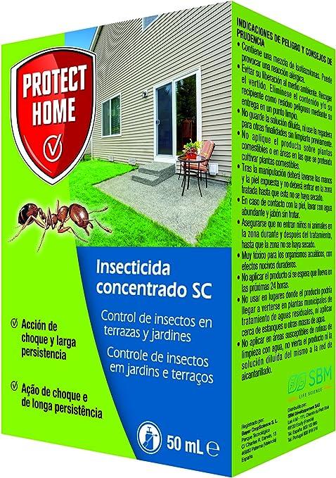 Protect Home - Insecticida Concentrado SC para el Control de Hormigas en Exteriores , Acción de Choque y Larga Persistencia, 50 ml, 12 x 7 x 3 cm, Verde Agua: Amazon.es: Jardín
