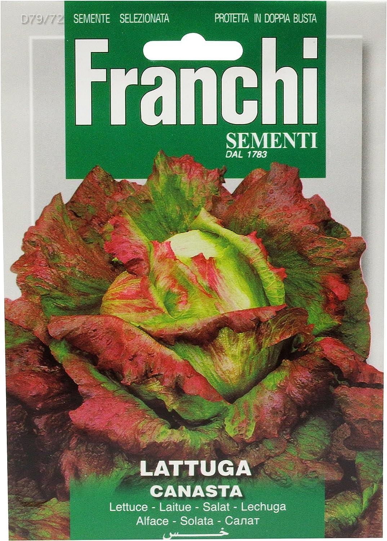 Franchi Graines d/'Italie-Laitue-Canasta-Graines