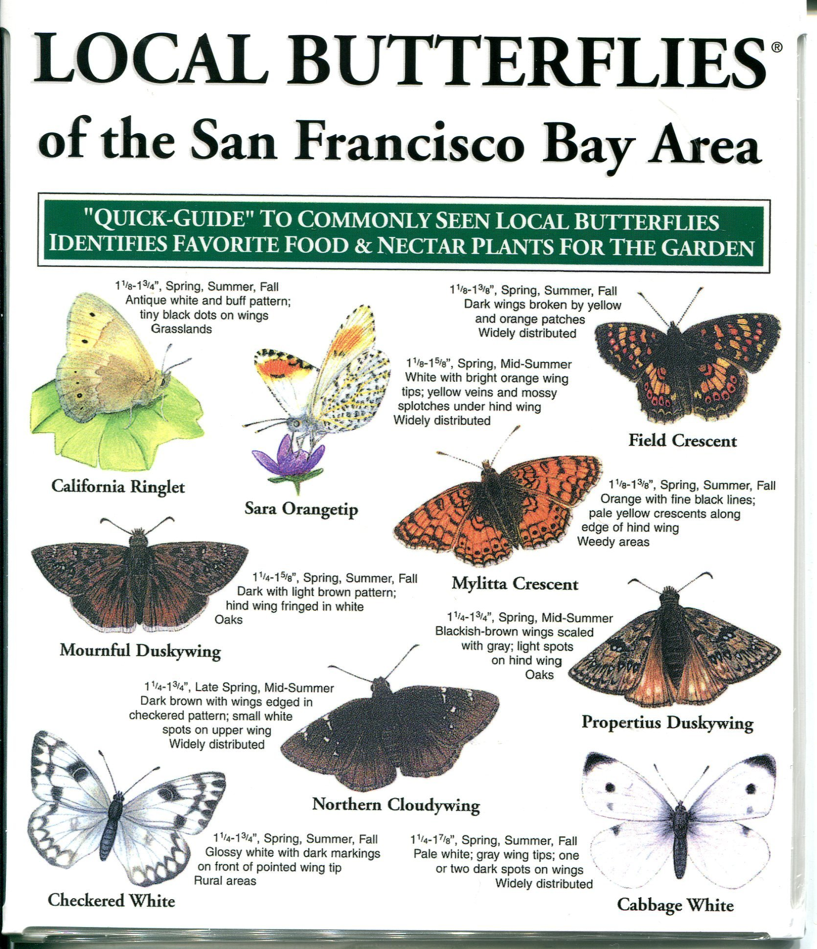 Charmant Local Butterflies Of The San Francisco Bay Area: Inc. Local Birds:  9781886403468: Amazon.com: Books