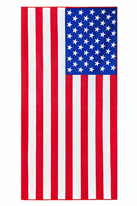 picture about Free Printable American Flag identified as : EverydaySpecialcom American Flag Print