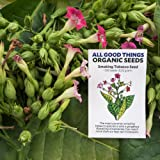 All Good Things Organic Seeds Smoking Tobacco Seeds (~350): Certified Organic, Farm Original Variety Non-GMO, Heirloom Seeds from the United States