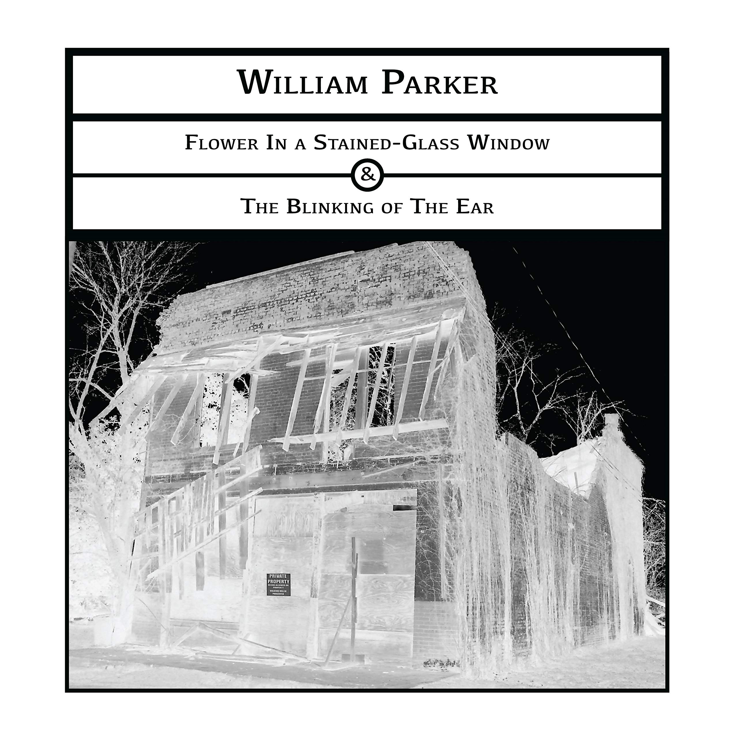 CD : William Parker - Flower In A Stained-glass Window -&- The Blinking (CD)