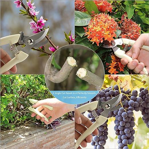 Tijeras de poda eléctricas recargables inhalámbricas para huerto y jardín: Amazon.es: Jardín