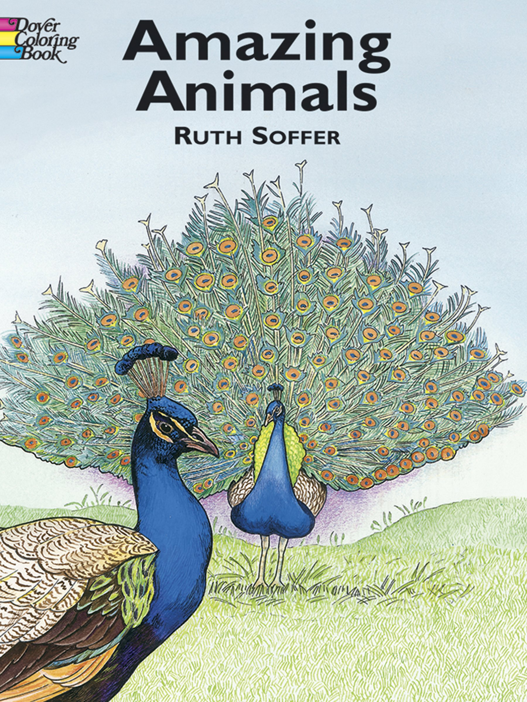 Amazing Animals Coloring Book Dover Nature Ruth Soffer 0800759420612 Amazon Books