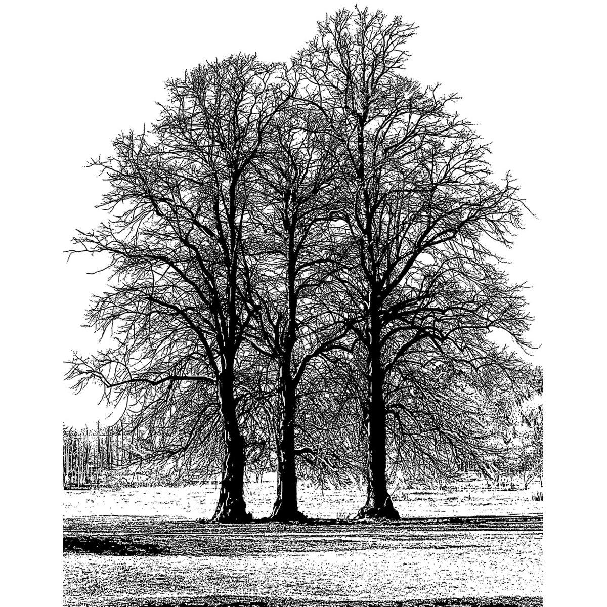 Crafty Individuals Tree Trio Unmounted Rubber Stamp, 4.75 x 7 4.75 x 7 CI-453