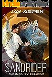 Sandrider (The Infinity Paradigm Book 2)
