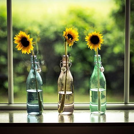 LEVIVO Set de 3 Botellas de Vidrio, Azul, Desnudo y Mint, 8 cm, 3 Unidades: Amazon.es: Hogar