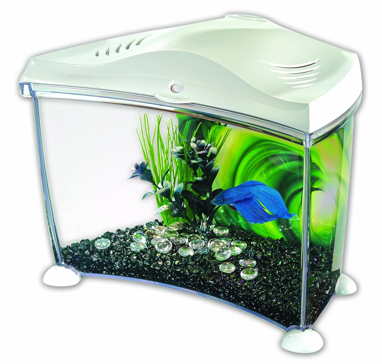 Marina Betta Plastic Aquarium in White 7 Liter Graphite Amazon
