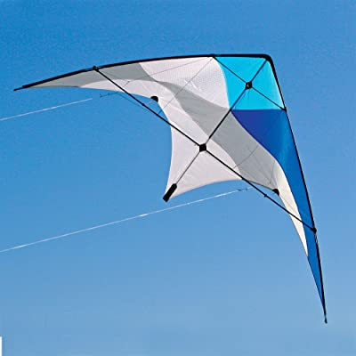 Into The Wind Swift Dual line Stunt Kite: Toys & Games