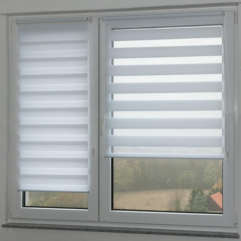 - Estor doble (Liedeco - Estor (90 x 200 cm color blanco ventana Estor persiana (sin agujeros: Amazon.es: Hogar