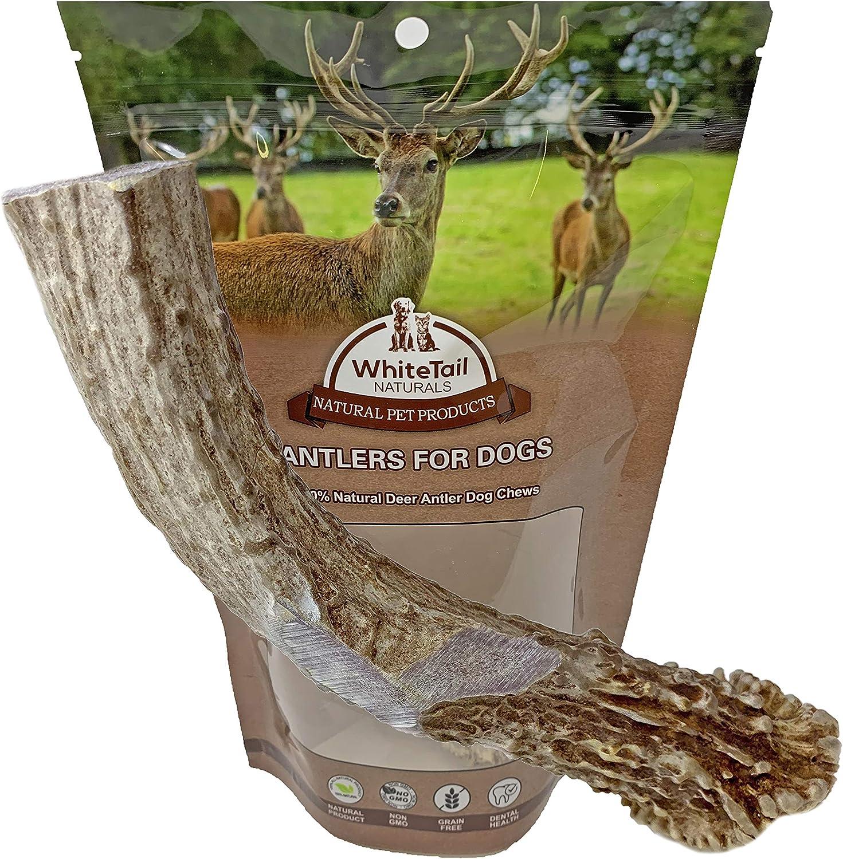 3 Pack ~ Medium ~ ElkDeer Natural Shed Antler ~ Premium Dog Chew