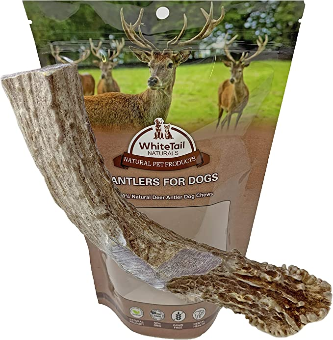Deer Tines 1 Large Deer Antler Forks: ONE Furniture piece Large Naturally Shed Deer Antlers Forks Crafts Jewelry Tribal