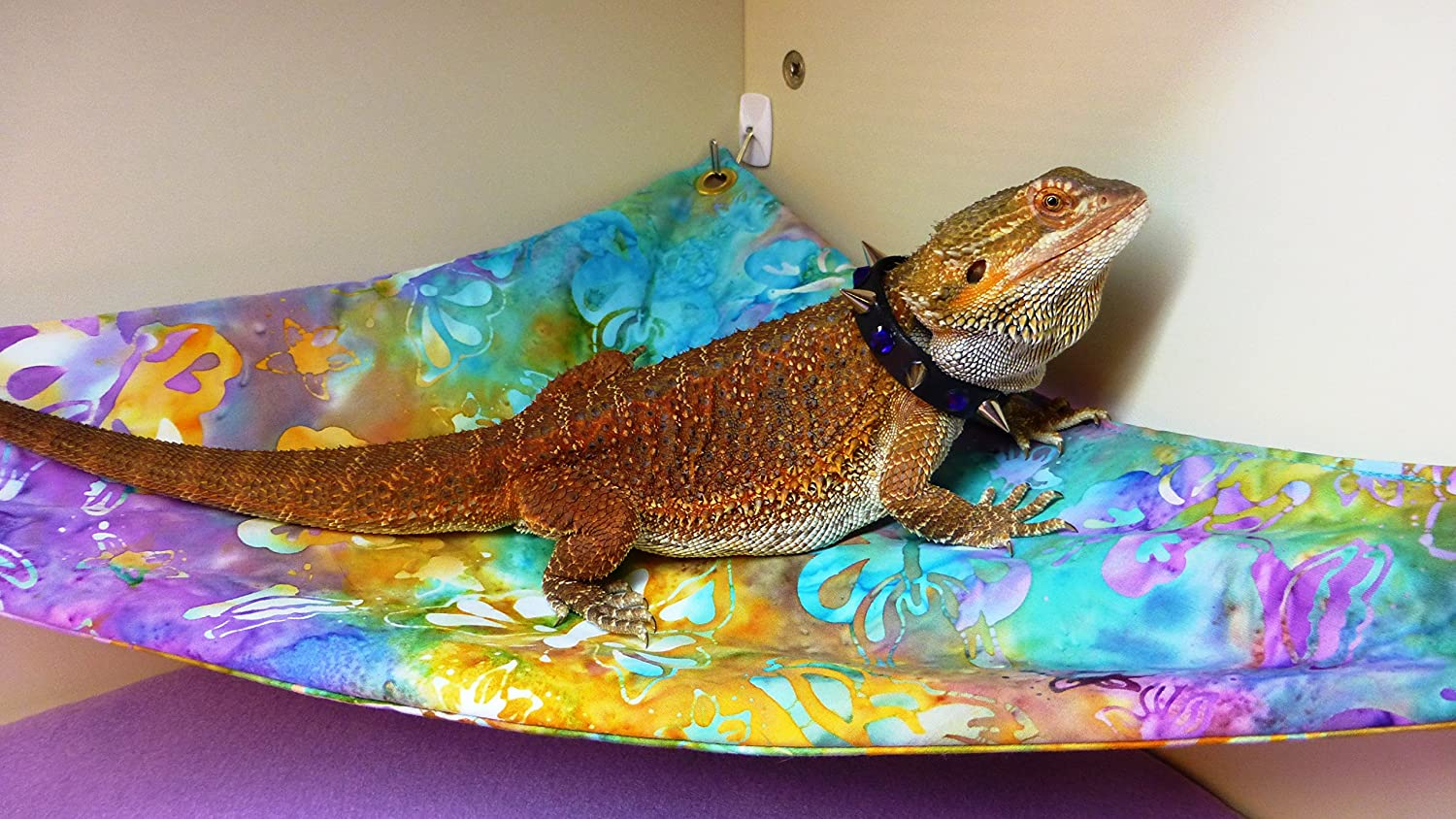 amazon     hammock for bearded dragons watercolor flowers fabric with suction cup hooks   pet supplies amazon     hammock for bearded dragons watercolor flowers      rh   amazon