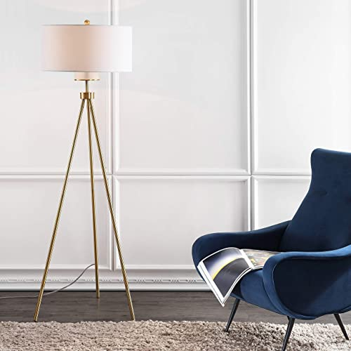 Safavieh FLL4008A Lighting Collection Enrica 66″ Brass and Gold Floor Lamp