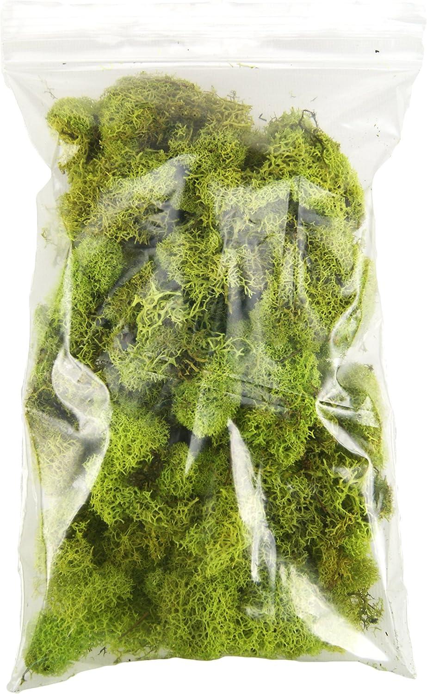 Joshs Frogs Spanish Moss 1 Quart