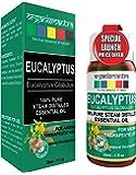 Organix Mantra Eucalyptus Essential Oil - 30Ml Pure, Therapeutic Grade, Natural Relaxant