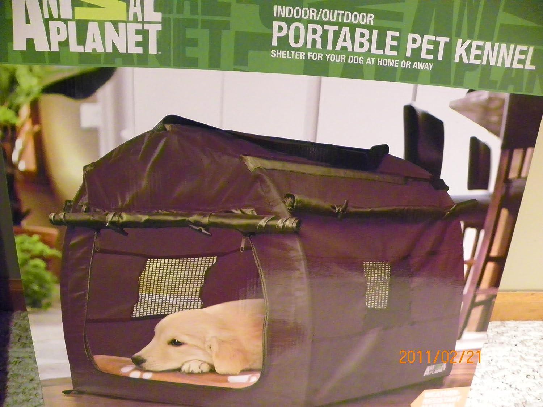 Amazon.com : Animal Planet indoor/outdoor portable pet kennel ...