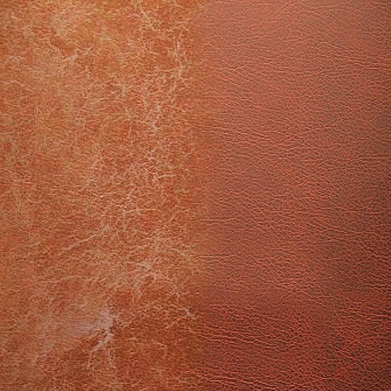 Amazoncom Liquid Leather Color Pen Restore Recolor and Repairs