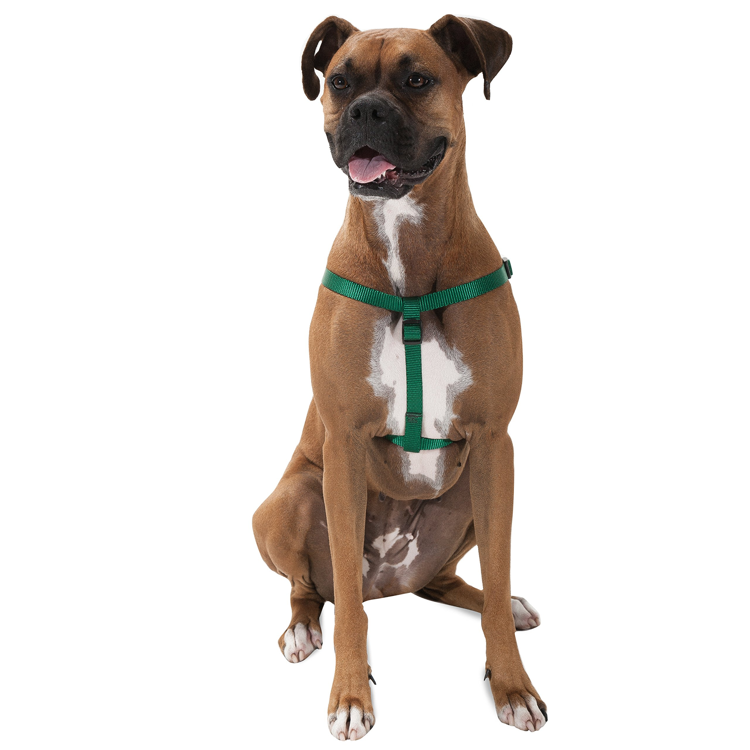 Majestic Pet Best Step In Dog Harness-Perfect For All Sized Dogs Small Medium & Large Heavy Duty Material- Adjustable For Training & Walking-25X40 Green by Majestic Pet (Image #1)