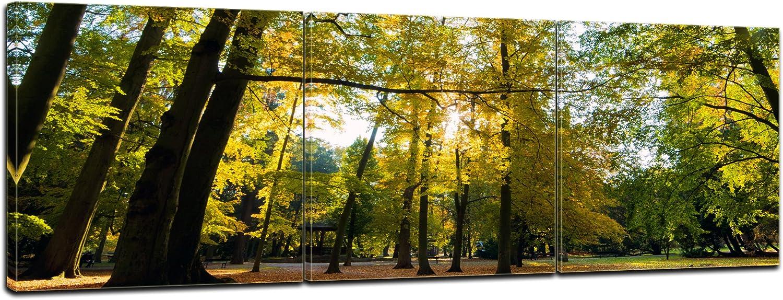 Bilderdepot24 Cuadros en Lienzo Las Hojas Que Caen en otoño 120x90 cm - Enmarcado Listo Bastidor Imagen. Directamente Desde el Fabricante: Amazon.es: Hogar