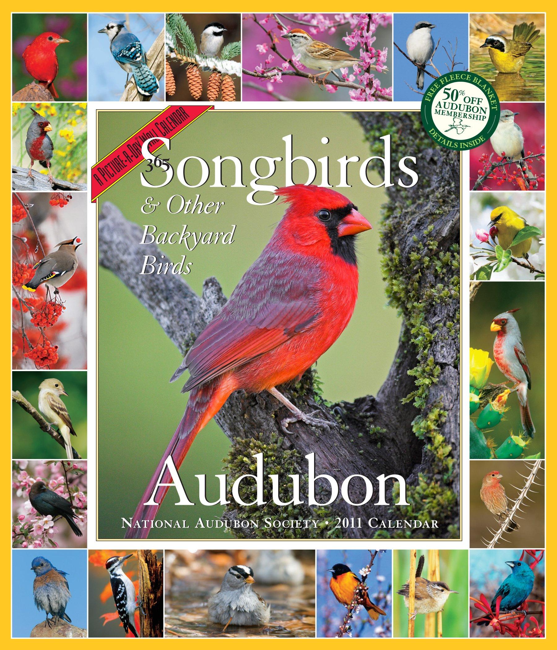 Audubon 365 Songbirds Calendar 2011 (Picture-A-Day Wall Calendars)