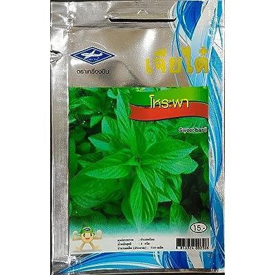 Sweet Basil Seeds(750 Seeds) From Thailand : Garden & Outdoor