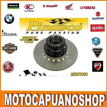 Pinasco Piñón Engranaje embrague 24 dientes helicoidales Vespa PX 200 Arcobaleno: Amazon.es: Coche y moto
