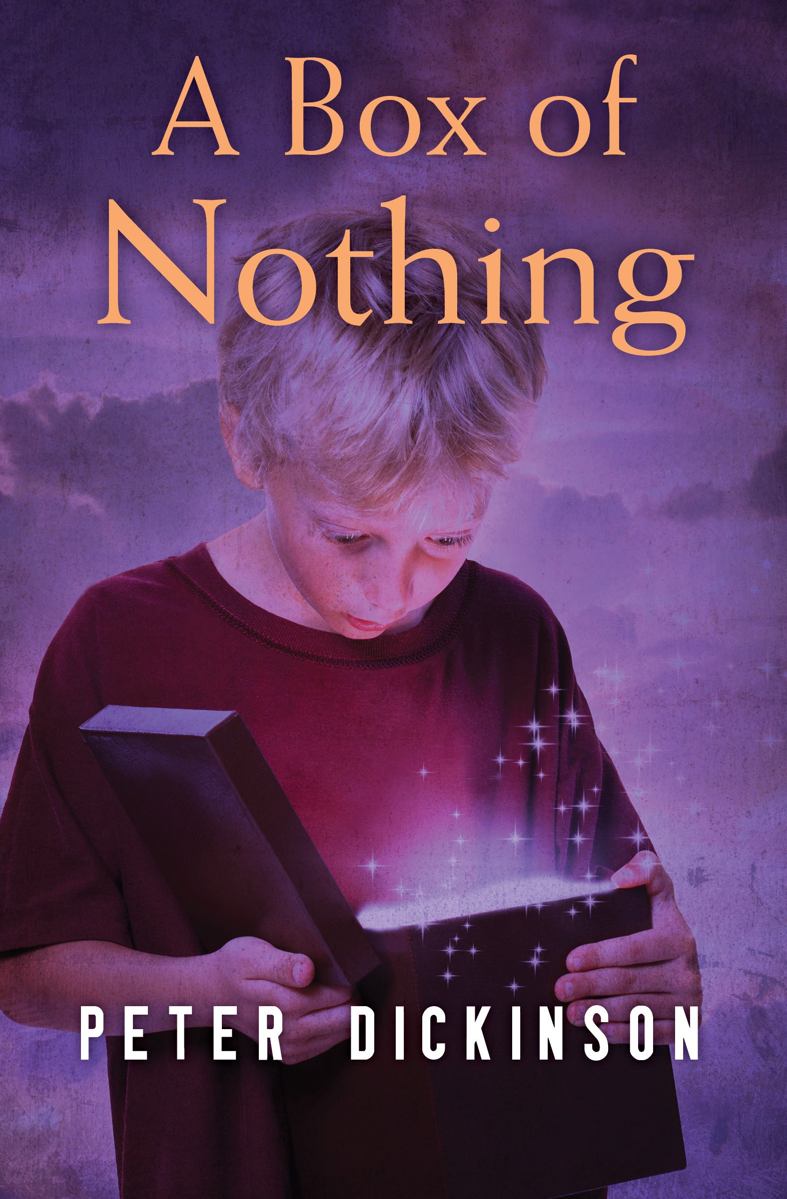 A Box of Nothing ebook