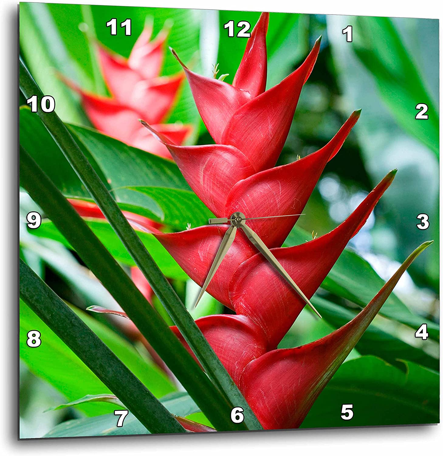 "3D Rose Heliconia - Botanical Gardens and Waterfall - St. Lucia Wall Clock, 10"" x 10"""