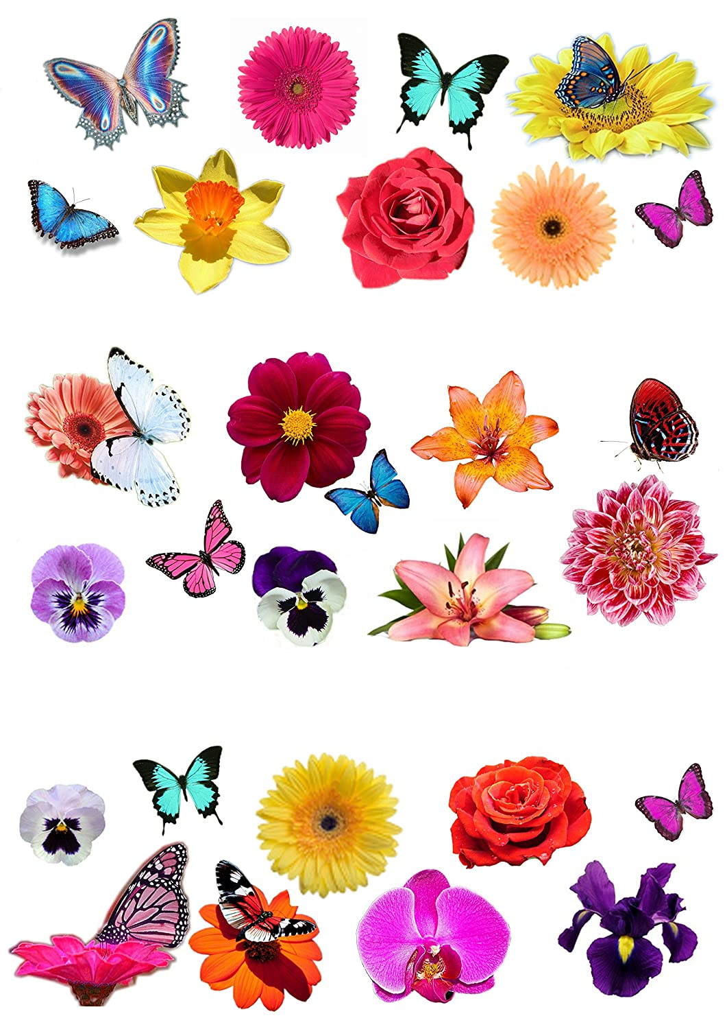 28 Beautiful Flower and Butterfly Edible Wafer Paper Cake Toppers Decorations Top That
