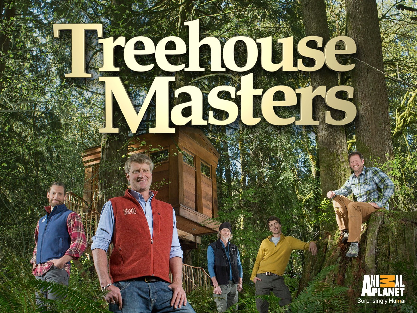 treehouse masters pete nelson daughter. Treehouse Masters Pete Nelson Daughter M