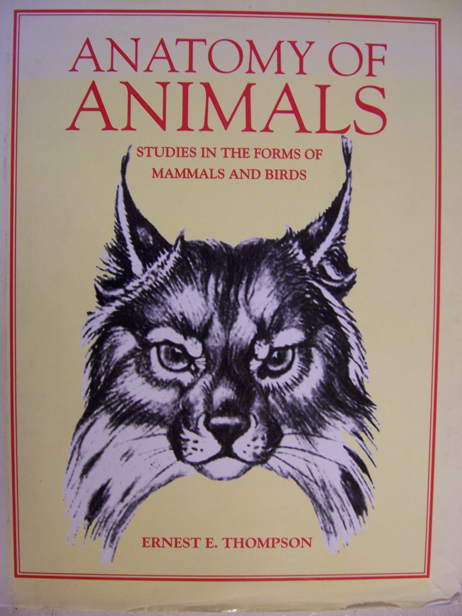 Anatomy of Animals: Studies in the Forms of Mammals and Birds ...