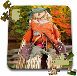3dRose Tennessee, Townsend. Halloween Scarecrow. - Puzzle, 10 by 10-inch (pzl_251408_2)