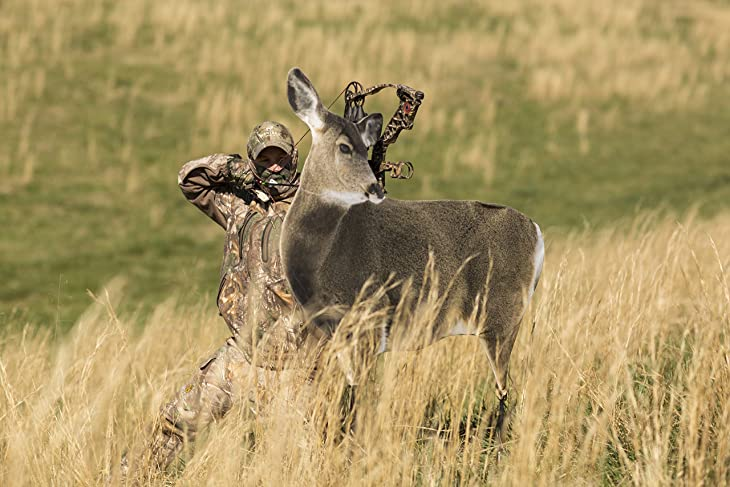 best deer decoys