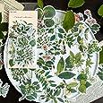 60pcs Laptop Stickers Scrapbook Stickers, Doraking DIY Decorative Green Plants Set Stickers for Laptop,Envelop,Scrapbook,Water Bottle,Luggage, Gift Wrap 20 Graphics(Plants Map)
