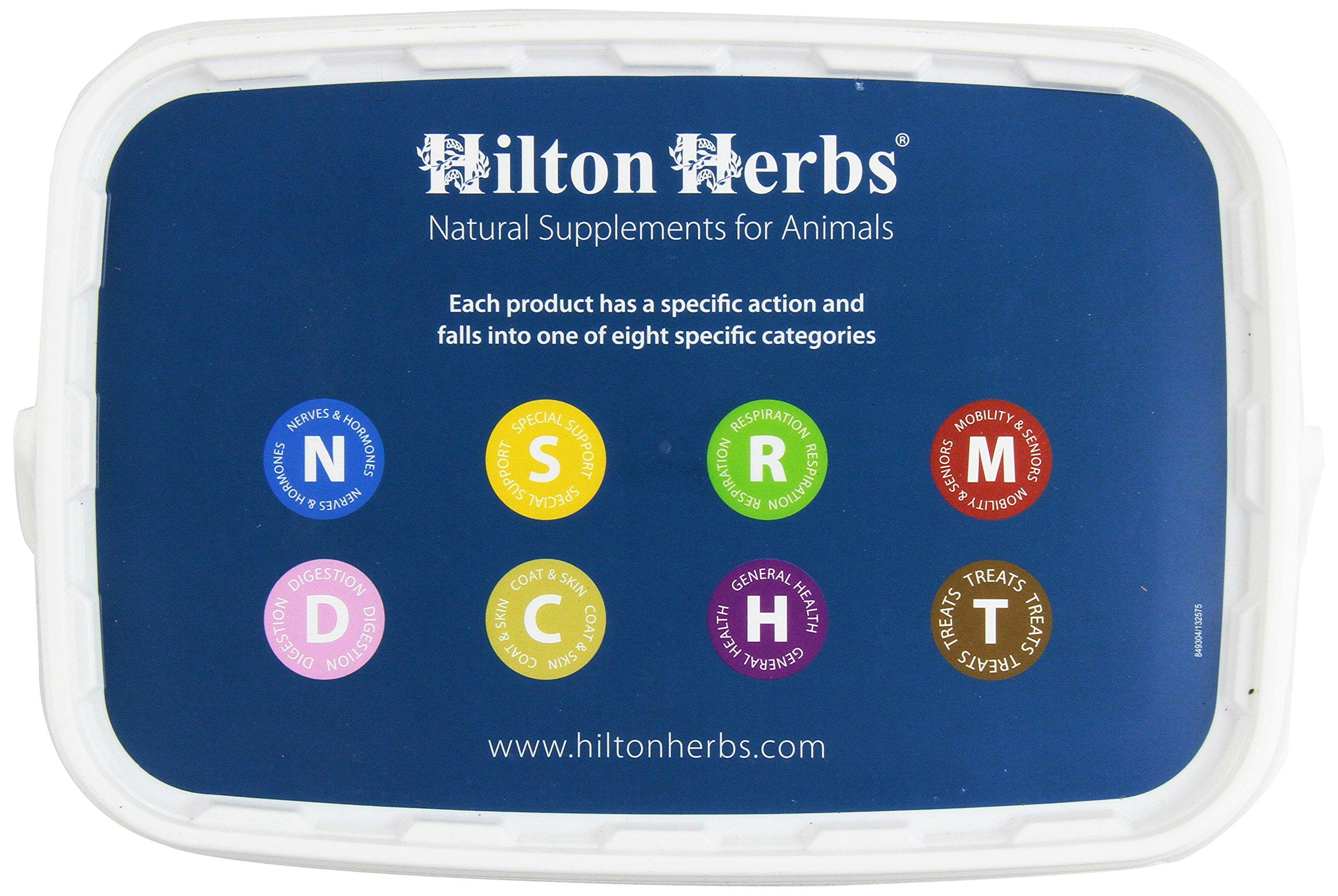 Hilton Herbs Vitex Plus Herbal Cushing's Support Supplement for Horses, 1kg Tub